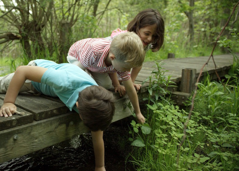 Pre-K students, nature-based play